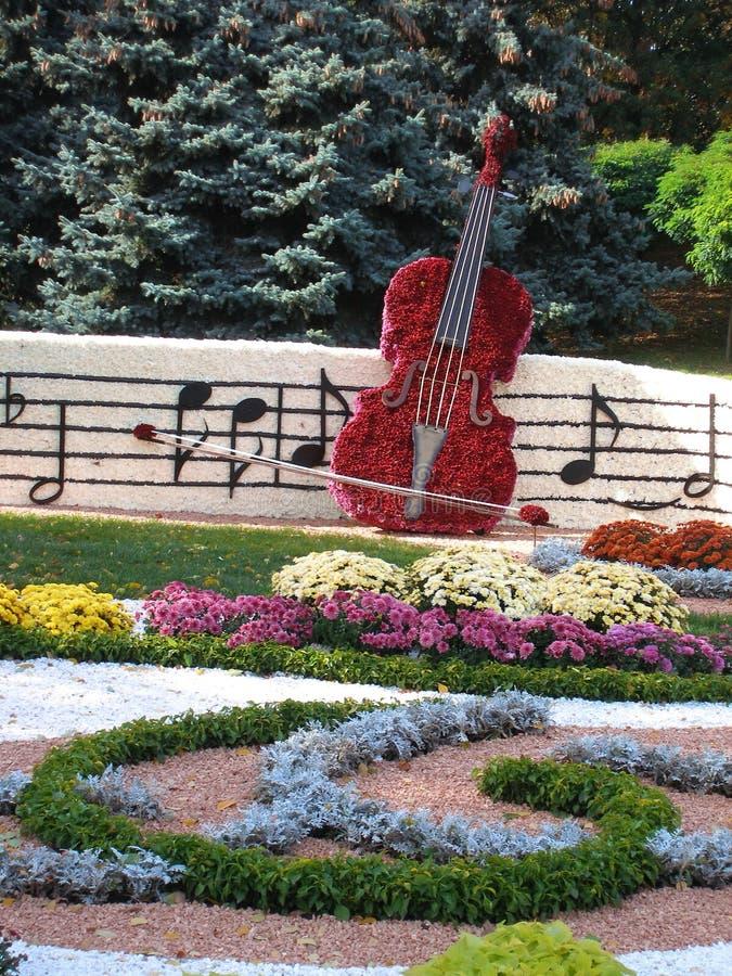 Цветник в форме виолончели стоковая фотография rf