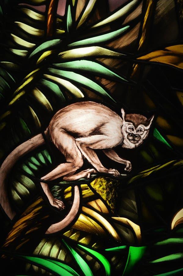 Цветное стекло обезьяны стоковая фотография rf