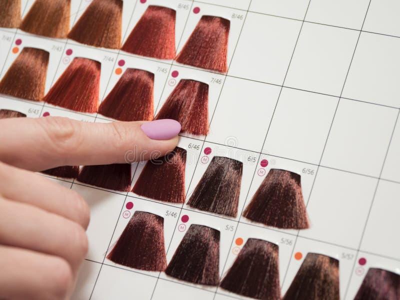 Цветовая палитра для расцветки волос Расцветка волос стоковая фотография rf