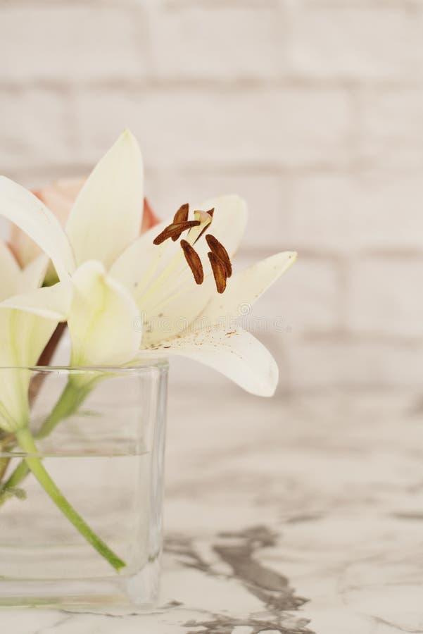 Цветок белой лилии в стеклянной вазе стоковые изображения rf