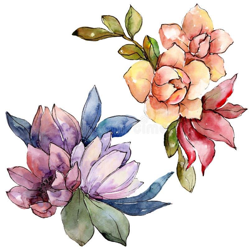 Цветок букета акварели красочный Флористический ботанический цветок Изолированный элемент иллюстрации иллюстрация вектора