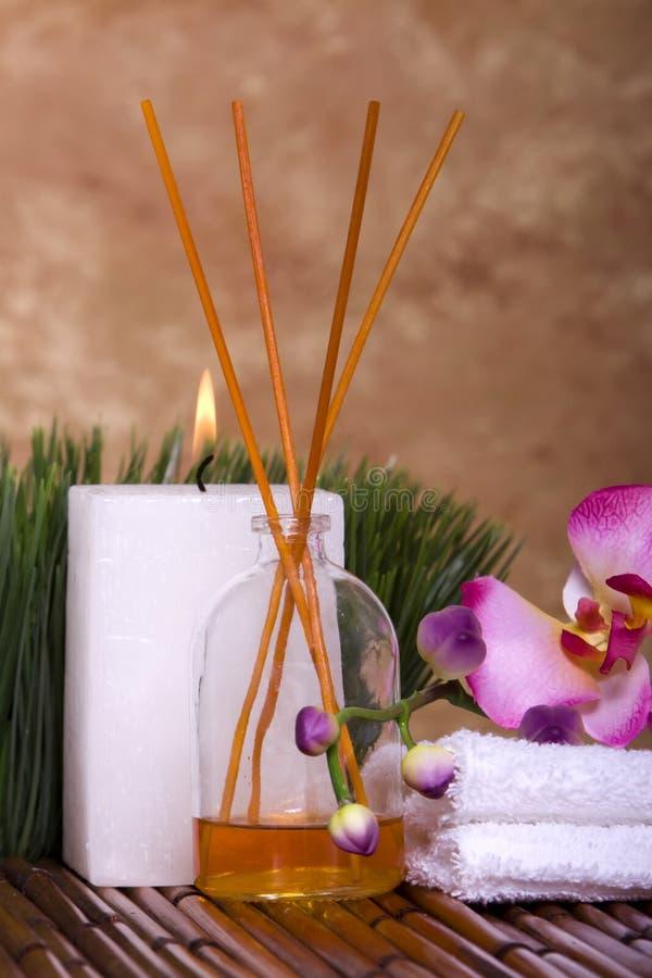 цветок возражает спу орхидеи стоковое фото rf