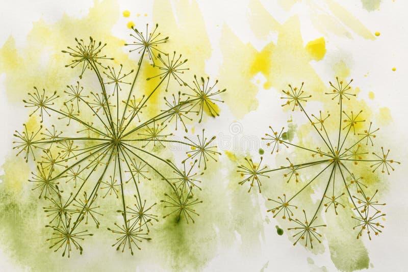 Цветок в красочной краске стоковое фото rf