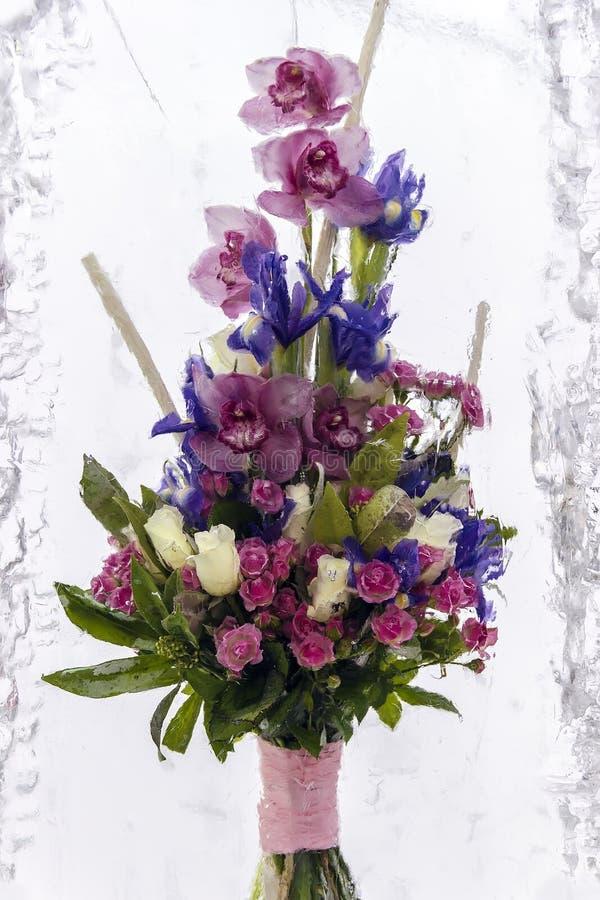 Цветок в льде стоковые изображения