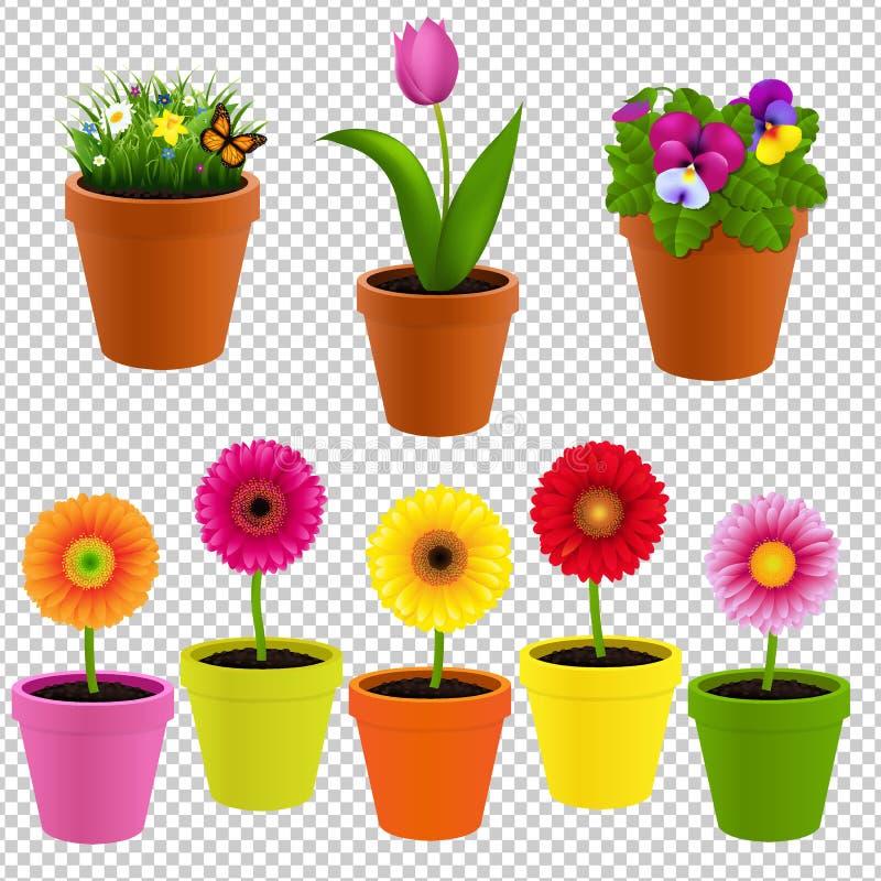 Цветок в собрании бака иллюстрация вектора