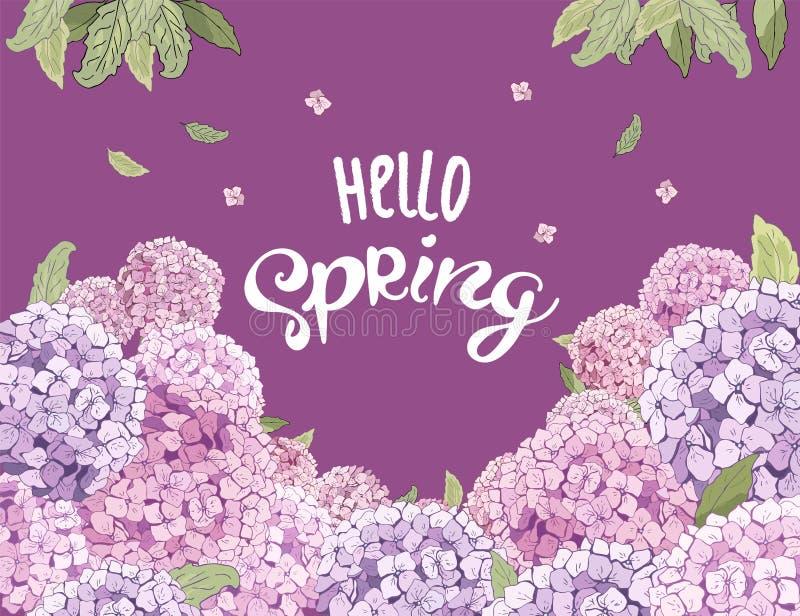 Цветок гортензии вектора цветение на 8-ое марта, свадьба, день Валентайн, День матери, продажи, сезонные события флористическое л иллюстрация вектора