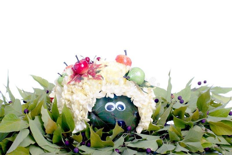 Цветок ежа в зеленом цвете выходит с ягодами на изолированный белый b стоковое изображение rf