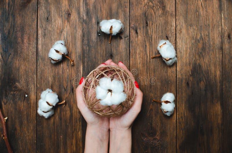 Цветок завода хлопка на коричневой деревянной предпосылке стоковое фото
