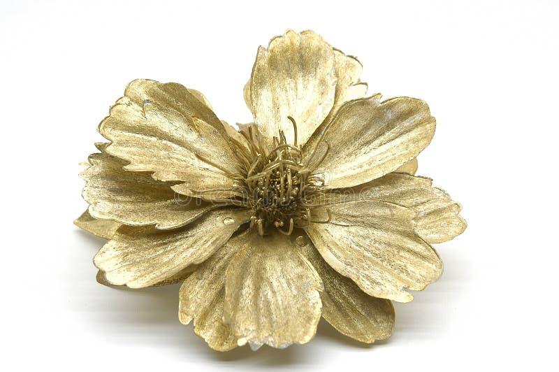 цветок золотистый Стоковое Изображение