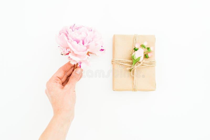 Цветок и подарочная коробка пиона владением женщины на белой предпосылке Плоское положение, взгляд сверху красный цвет поднял стоковая фотография rf