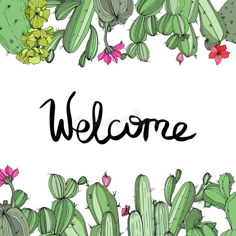 Цветок кактуса зеленого цвета вектора флористический ботанический Выгравированное искусство чернил Квадрат орнамента границы рамк бесплатная иллюстрация
