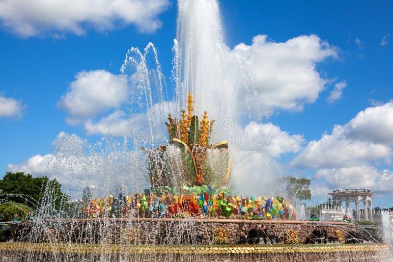 Цветок камня фонтана, выставка достижений народного хозяйства VDNKh в Москве, России стоковое фото
