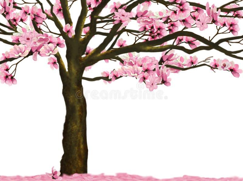 Цветок магнолии лилии бесплатная иллюстрация