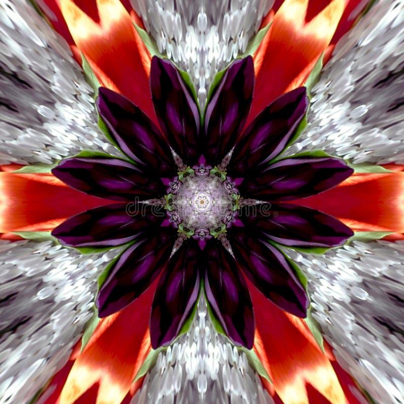Цветок мандалы осени иллюстрация вектора