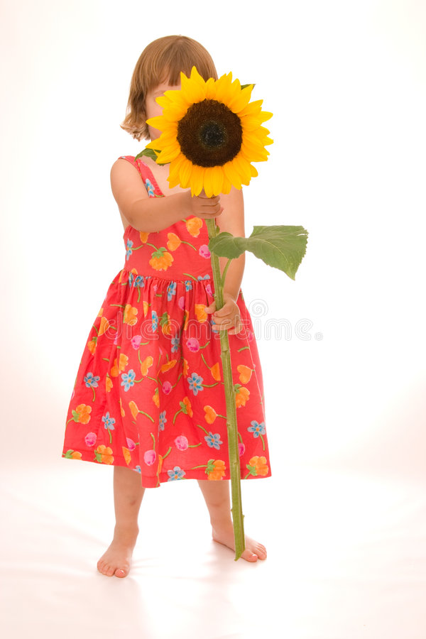 цветок немногая мое стоковое изображение
