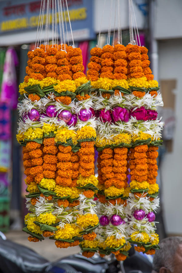 Цветок ноготк в Мумбае стоковое фото