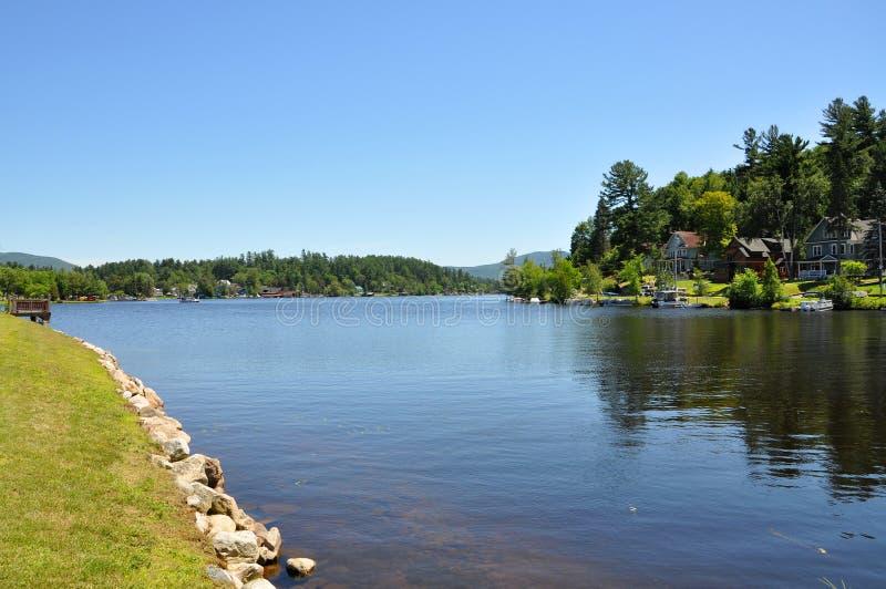 Цветок озера в озере Saranac, Нью-Йорке стоковое фото rf