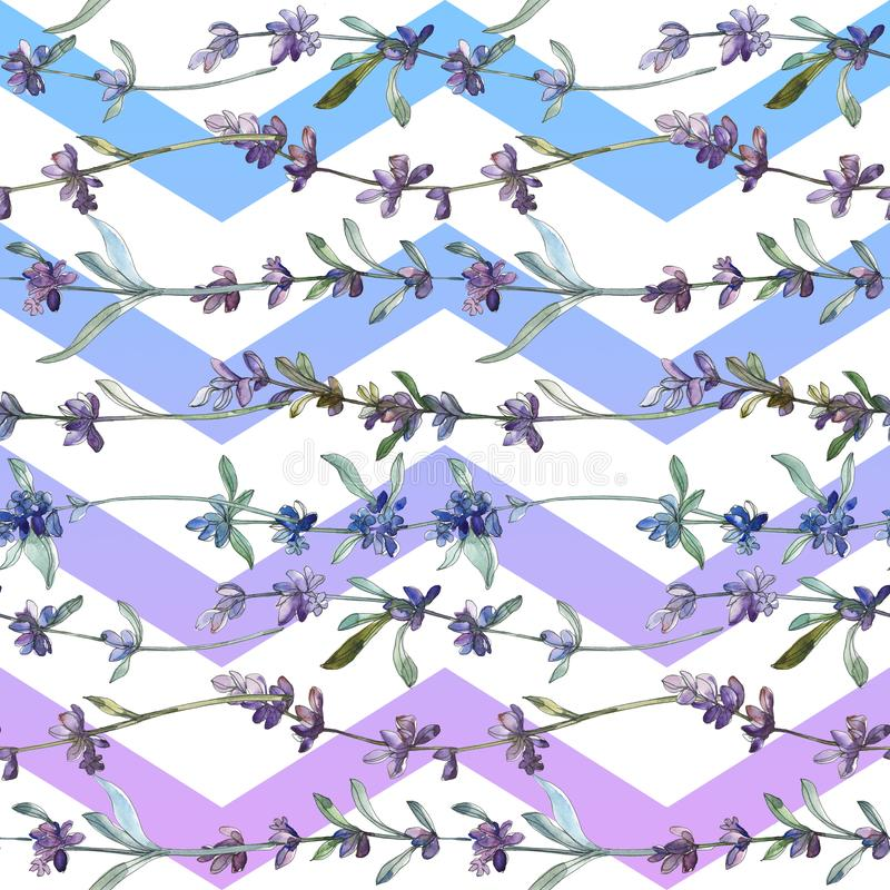 Цветок пурпурной лаванды флористический ботанический r r стоковое изображение rf