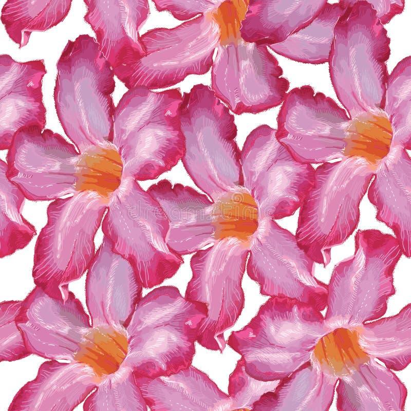Цветок розового пинка пустыни картина безшовная Эскиз на белом bac иллюстрация вектора