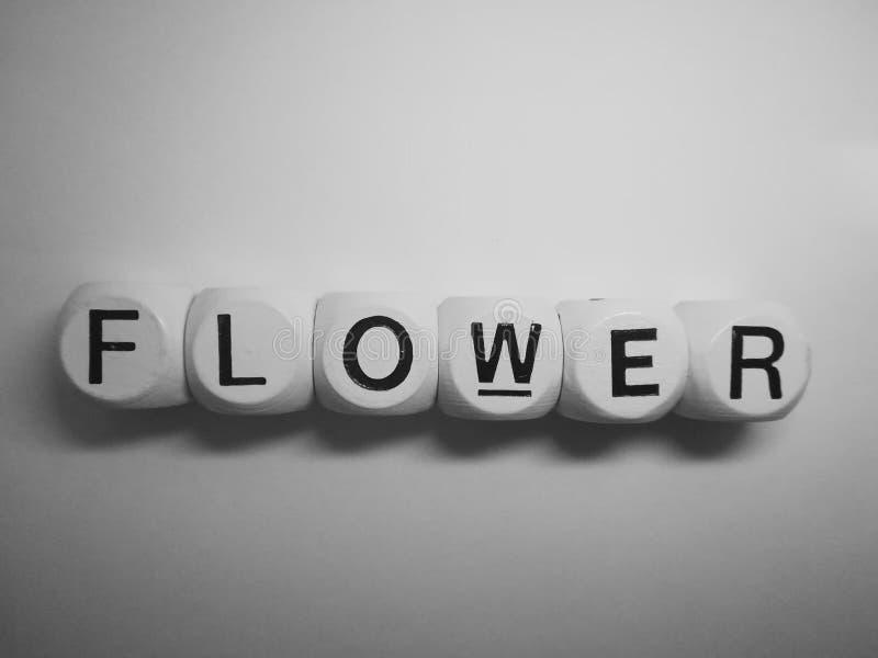 Цветок слова сказанный по буквам на кости стоковое фото