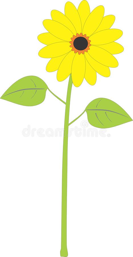 Цветок Солнця иллюстрация вектора