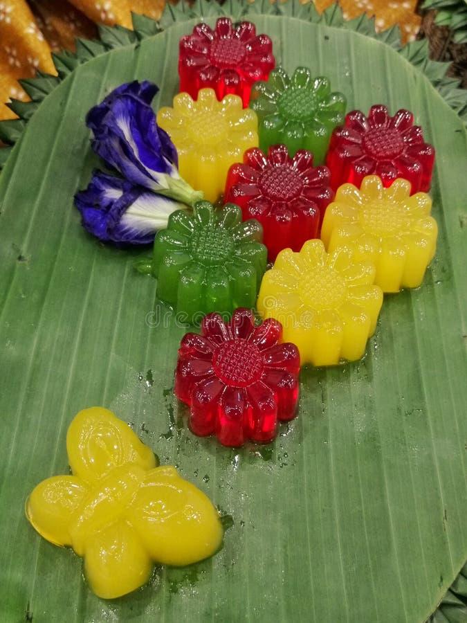 Цветок студня стоковое изображение