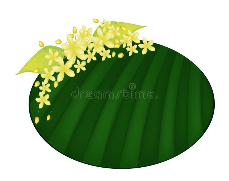 Цветок фистулы кассии на зеленых лист банана иллюстрация штока