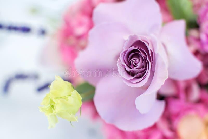 Цветок delphinum wthite макроса чувствительный свежий Украшение свежих цветков свадьбы стоковая фотография rf