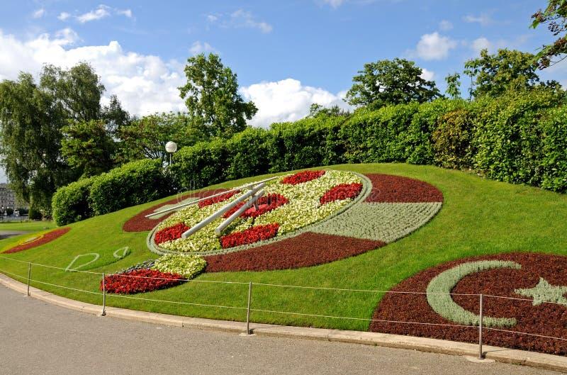цветок geneva часов стоковая фотография rf