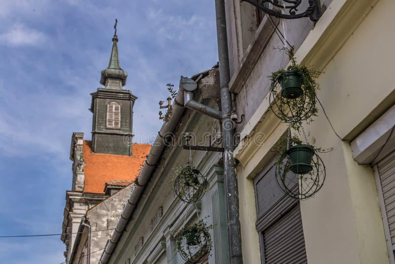 Цветочные горшки и старые дома в Petrovaradin, Novi унылом стоковое изображение