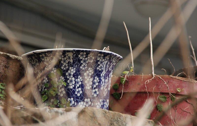 Цветочный горшок стоковая фотография rf