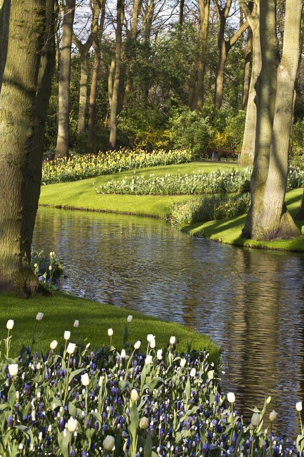 Цветочный сад весной стоковая фотография