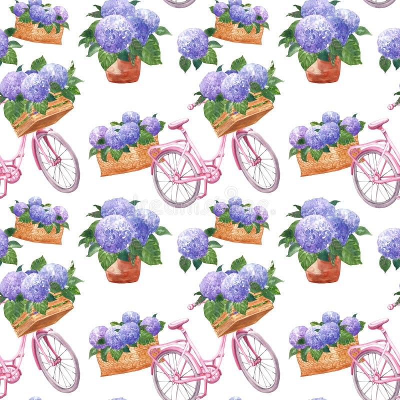 Цветочный узор акварели в винтажном стиле Провансали с розовым велосипедом и пурпурными цветками гортензии в корзине и плантатора иллюстрация вектора