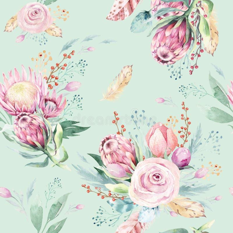Цветочный узор акварели чертежа руки с розой, листьями, ветвями и цветками protea Богемский безшовный пинк золота иллюстрация вектора