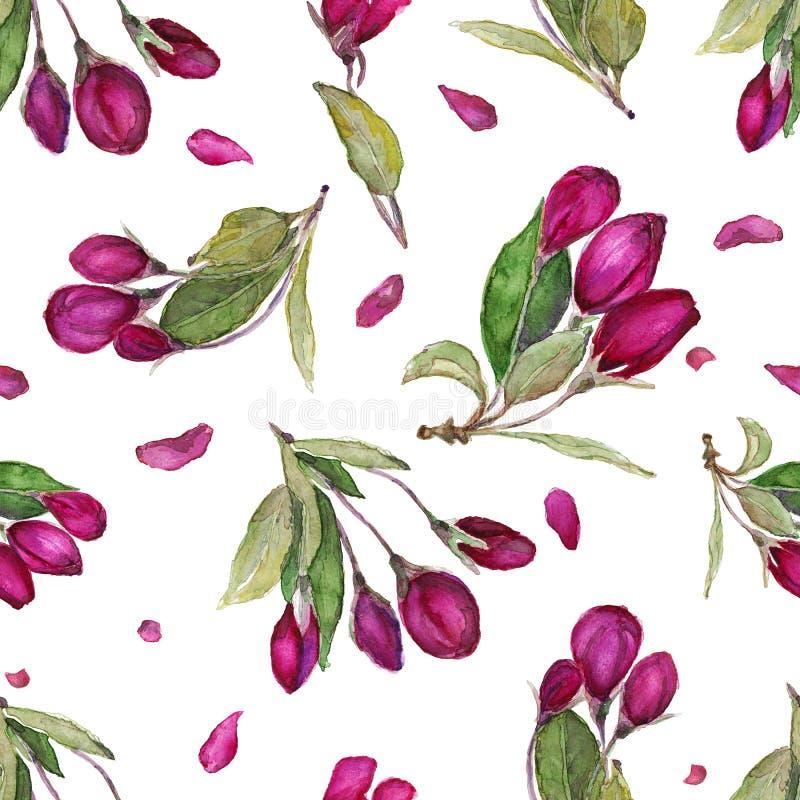 Цветочный узор акварели безшовный Нарисованные рукой цветки цветения иллюстрация штока
