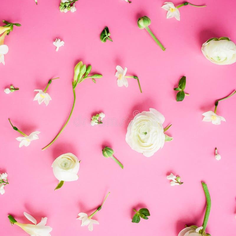 Цветочный узор белых цветков лютика, snapdragon и тюльпана на розовой предпосылке стоковое изображение