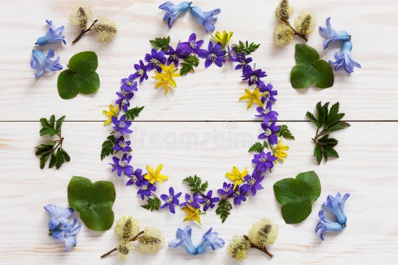 Цветочный узор весны со свежим голубым цветком гиацинта и hepatica на белой деревянной предпосылке стоковые фото