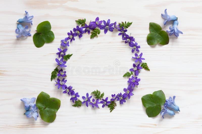 Цветочный узор весны со свежим голубым цветком гиацинта и hepatica на белой деревянной предпосылке стоковые фотографии rf