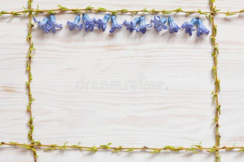 Цветочный узор весны со свежим голубым цветком гиацинта на белой деревянной предпосылке стоковое изображение