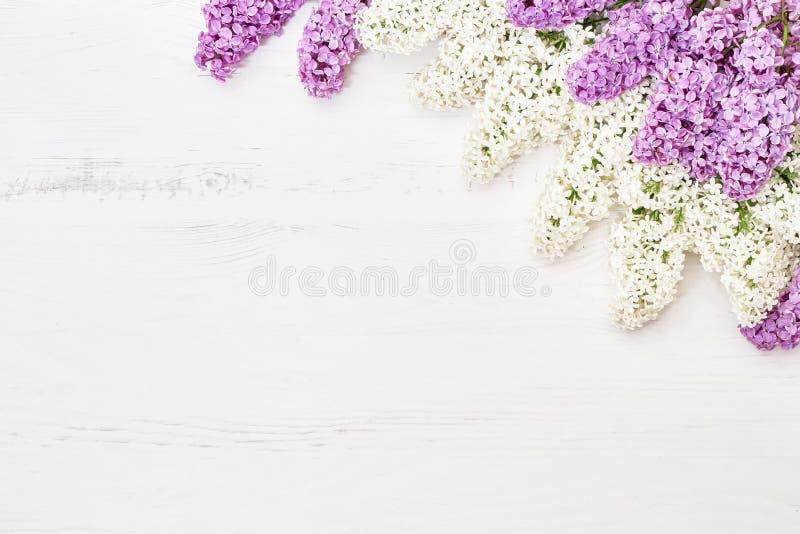 Цветочный узор ветвей пинка и белых сирени, предпосылки цветков o стоковая фотография