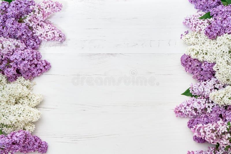 Цветочный узор ветвей сирени, предпосылка цветков o стоковые фотографии rf