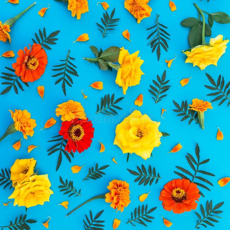 Цветочный узор желтых и красных цветков на голубой предпосылке Плоское положение, взгляд сверху вектор детального чертежа предпос стоковые фотографии rf