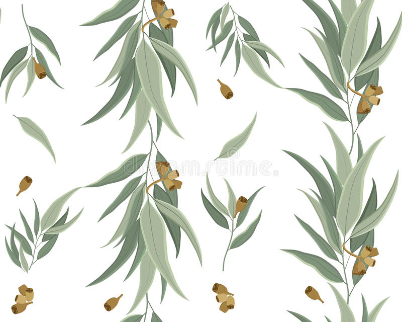 Цветочный узор листьев и семян евкалипта иллюстрация вектора