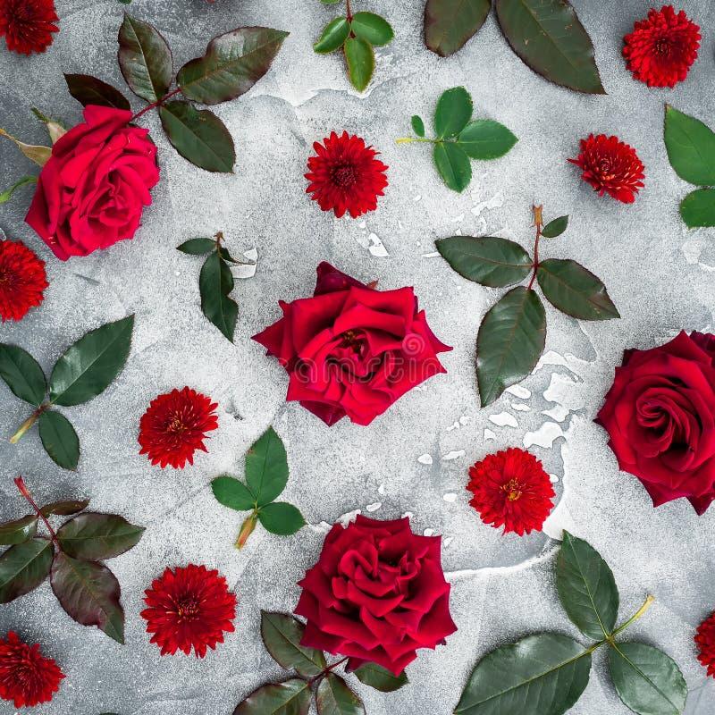 Цветочный узор красных роз и хризантем цветет с листьями на темной предпосылке Плоское положение, взгляд сверху стоковое изображение rf