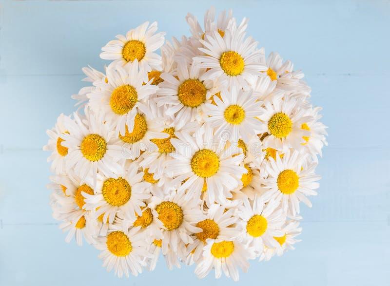 Цветочный узор лета с цветком стоцвета над зеленоголубой винтажной деревянной предпосылкой стоковое фото