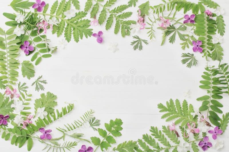 Цветочный узор на белой деревянной предпосылке стоковое изображение rf
