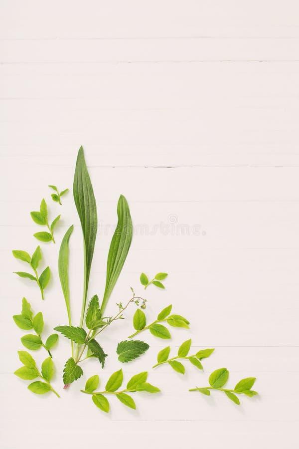 Цветочный узор на белой деревянной предпосылке стоковые фотографии rf