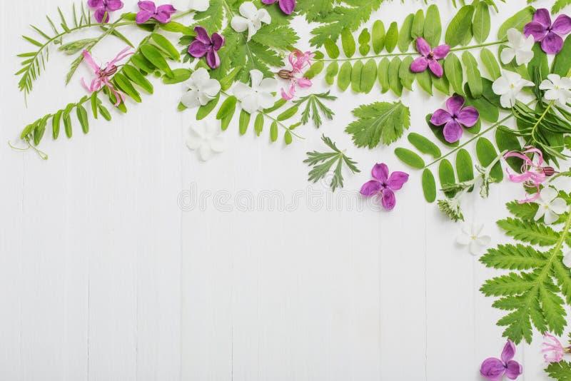 Цветочный узор на белой деревянной предпосылке стоковое изображение