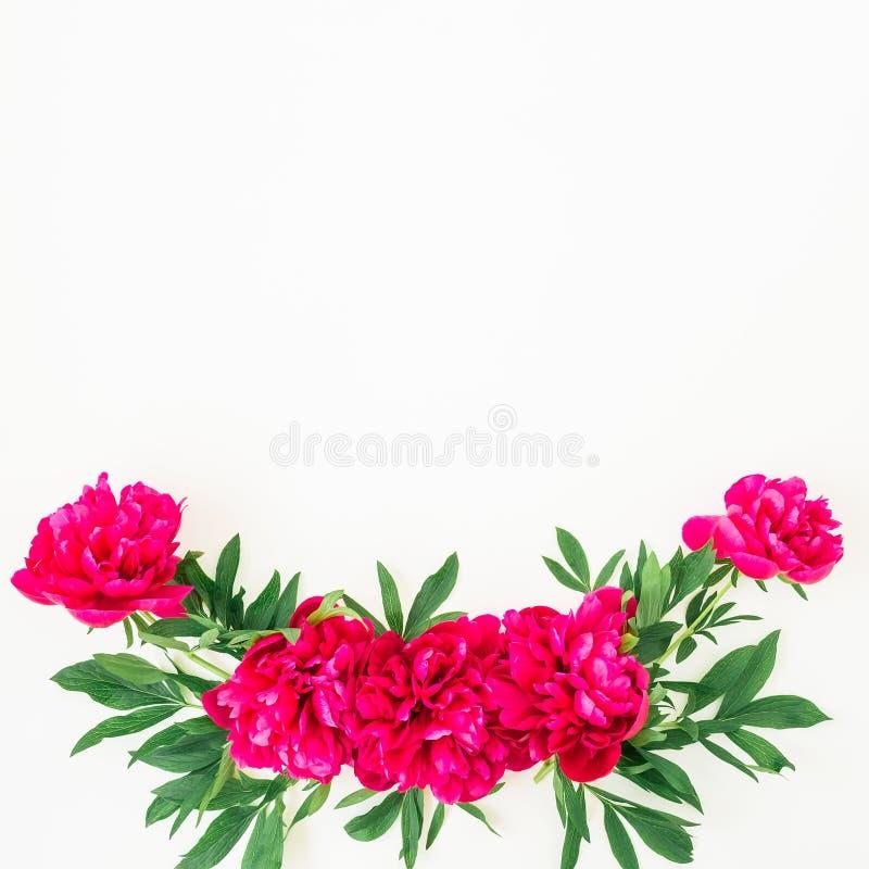 Цветочный узор пиона и листьев на белой предпосылке Плоское положение, взгляд сверху Картина сделанная из цветков стоковое фото