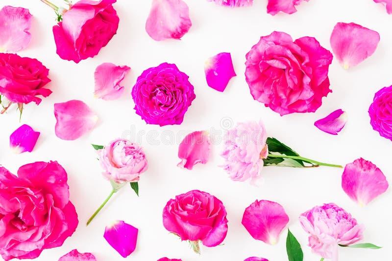 Цветочный узор пиона цветет, розовые розы и листья на белой предпосылке Плоское положение, взгляд сверху стоковое изображение rf
